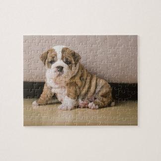 English bulldog puppies jigsaw puzzle