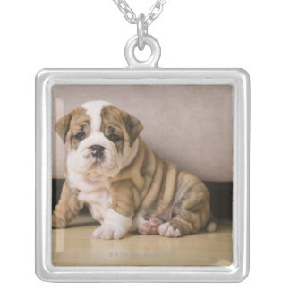 English bulldog puppies silver plated necklace