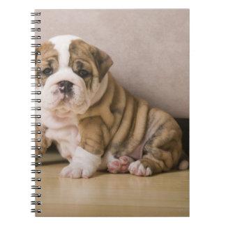 English bulldog puppies spiral notebook