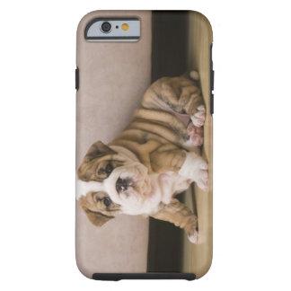 English bulldog puppies tough iPhone 6 case