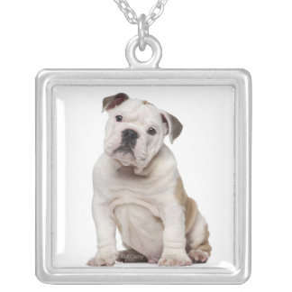 English bulldog puppy (2 months old) square pendant necklace