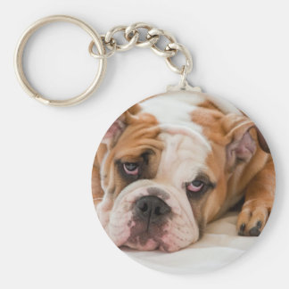 English bulldog puppy basic round button key ring