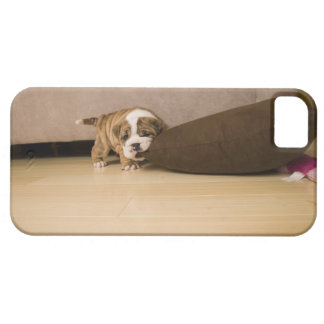 English Bulldog puppy biting pillow Case For The iPhone 5