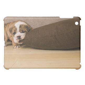 English Bulldog puppy biting pillow iPad Mini Cases