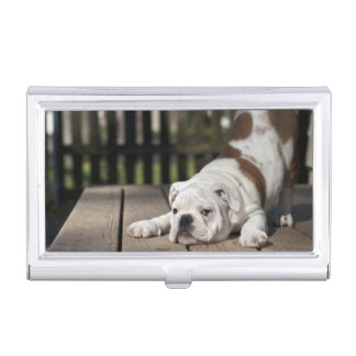 English Bulldog Puppy Business Card Holder