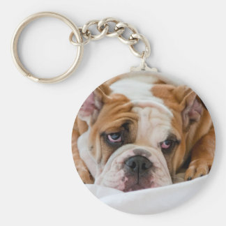 English bulldog puppy key ring