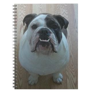 English bulldog puppy notebook