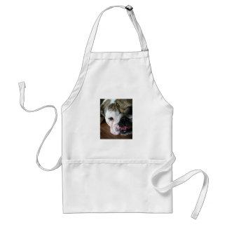 English Bulldog Puppy Standard Apron