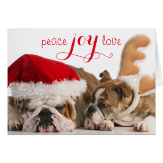 English Bulldog Santa And Reindeer Card