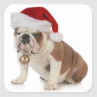 English Bulldog Wearing Santa Hat Square Sticker