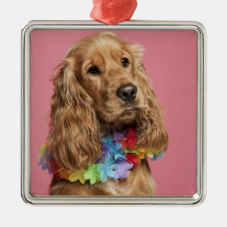 English Cocker Spaniel (10 months old) Christmas Ornament