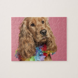 English Cocker Spaniel (10 months old) Jigsaw Puzzle