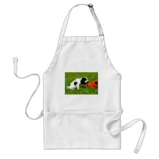 English Cocker Spaniel Puppy with Red Clog Standard Apron