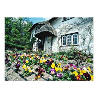 English cottage, pansies  flowers invites