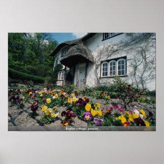 English cottage, pansies poster