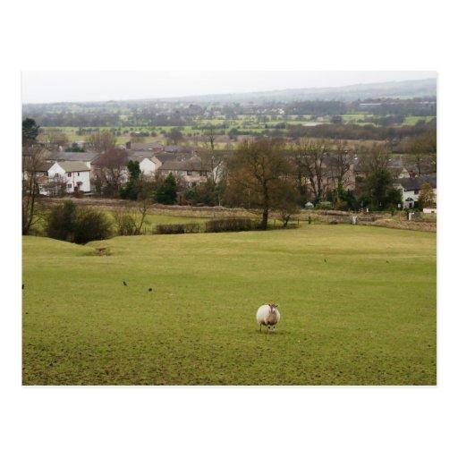 English Countryside Post Card