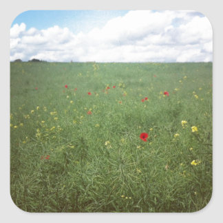 English Countryside Square Sticker