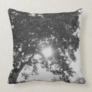 English countryside sun through a tree cushion