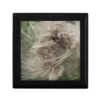 English dandilion clot small square gift box