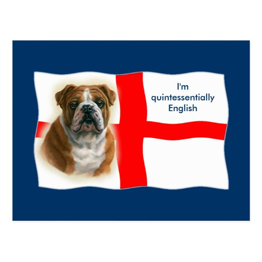 English flag and bulldog Postcard
