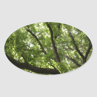 English Forest Canopy Oval Stickers