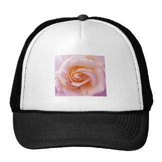 English Garden Peach and Pink Rose Cap