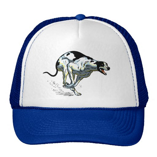 english greyhound trucker hats