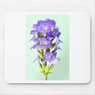 English Lavender Flower Photo Mouse Mat