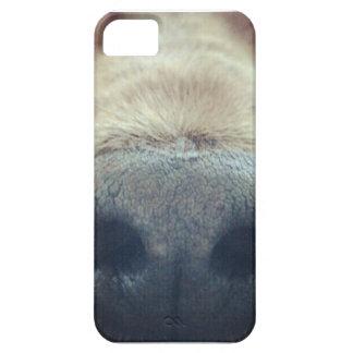 English layer iphone5 Cocker spaniel iPhone 5 Case