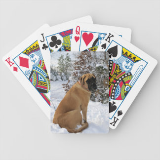 "English Mastiff dog ""Snow Pose"" photo Bicycle Playing Cards"