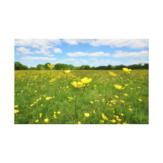 English Meadow in Summer Canvas Print