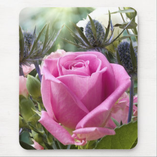 English pink rose close up in garden with sun mouse pad