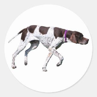 English Pointer dog beautiful photo, gift Round Stickers