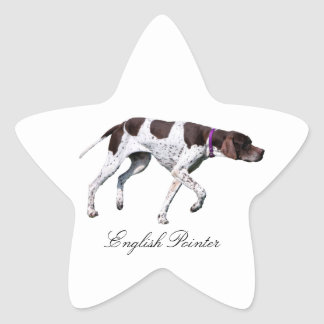 English Pointer dog beautiful photo, gift Star Stickers