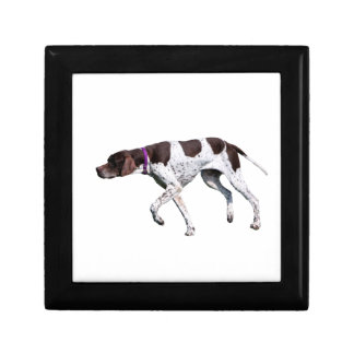 English Pointer dog jewelry box trinket box