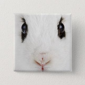 English rabbit (Oryctolagus cuniculus) 15 Cm Square Badge