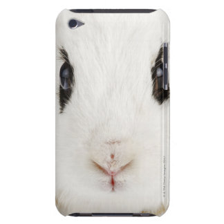 English rabbit (Oryctolagus cuniculus) Barely There iPod Case