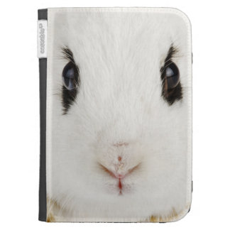 English rabbit Oryctolagus cuniculus Cases For The Kindle