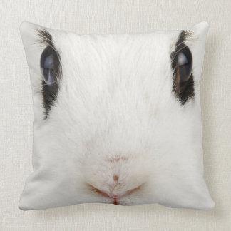 English rabbit Oryctolagus cuniculus Pillows