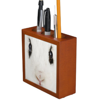 English rabbit (Oryctolagus cuniculus) Desk Organizers