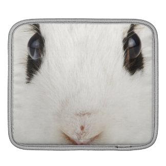 English rabbit (Oryctolagus cuniculus) iPad Sleeve