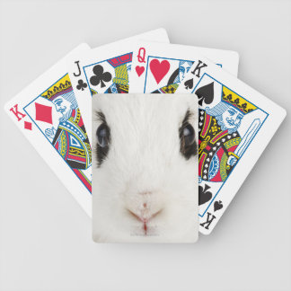 English rabbit Oryctolagus cuniculus Bicycle Poker Deck