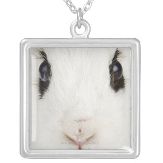 English rabbit (Oryctolagus cuniculus) Silver Plated Necklace