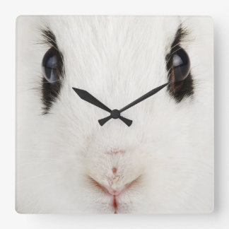 English rabbit (Oryctolagus cuniculus) Wall Clock