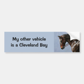 English Riding Horse Sky Blue Bumper Sticker