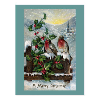 English Robins on a Fence Antique Christmas Postcard
