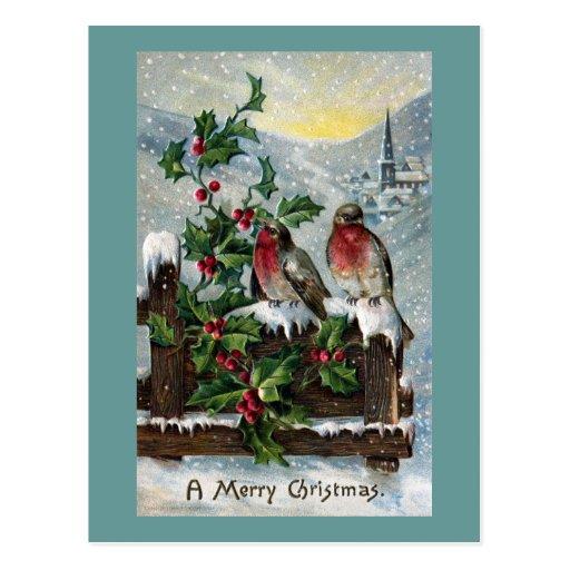 English Robins on a Fence Antique Christmas Postcard