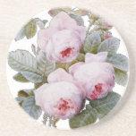 English Rose Garden Bourbon Pink Floral Beverage Coasters