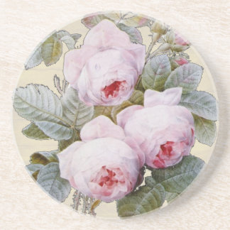English Rose Garden Bourbon Pink Floral Coaster