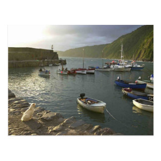 English Scenes, Clovelly harbour Devon, Postcard